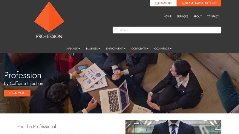 Profession Professional Website Design